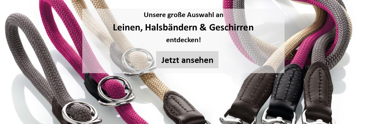 Hundehalsband-Leine-Hund-Geschirr-Hundebedarf-petplus24