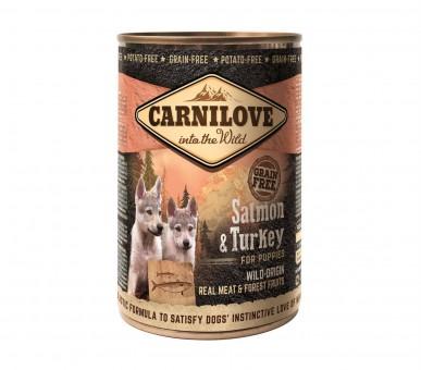 Carnilove Dog Dose Puppy Lachs & Truthahn 12x 400g
