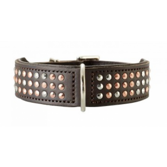Hunter Halsband San Diego | Leder | braun 37 - 30-34,5 cm - 26 mm