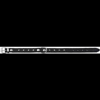 Trixie Basic Halsband mit Nieten   schwarz XS: 21-25 cm/12 mm