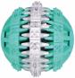 Trixie Denta Fun Zahnpflege-Ball | Naturgummi, Größe: ø 7 cm