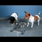 Trixie Hundebar, Größe: 2 × 2,8 l/ø 24 cm