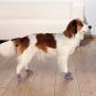 Trixie Hundesocken | Anti-Rutsch | 2 Stück | grau, Größe: M-L