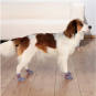 Trixie Hundesocken | Anti-Rutsch | 2 Stück | grau, Größe: L-XL