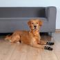 Trixie Hundesocken | Anti-Rutsch | 2 Stück | schwarz, Größe: M-L