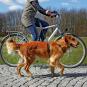 Trixie Fahrrad- und Joggingleine 1,00-2,00 m   25 mm   schwarz